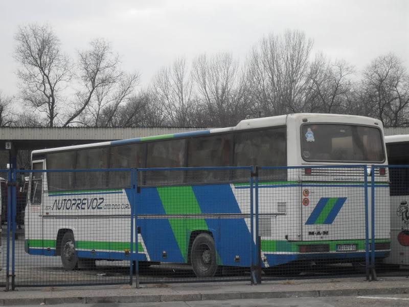 Atp AutoPrevoz - Saobraćaj, Čurug SDC13943