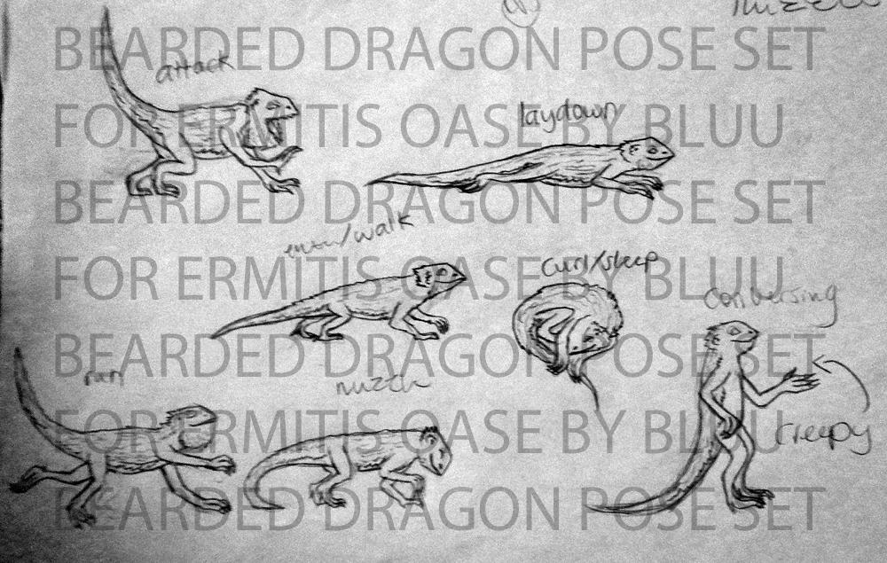 Pose sets (6-22 completed) BeardeddragonsetforEO_zps218ac46e