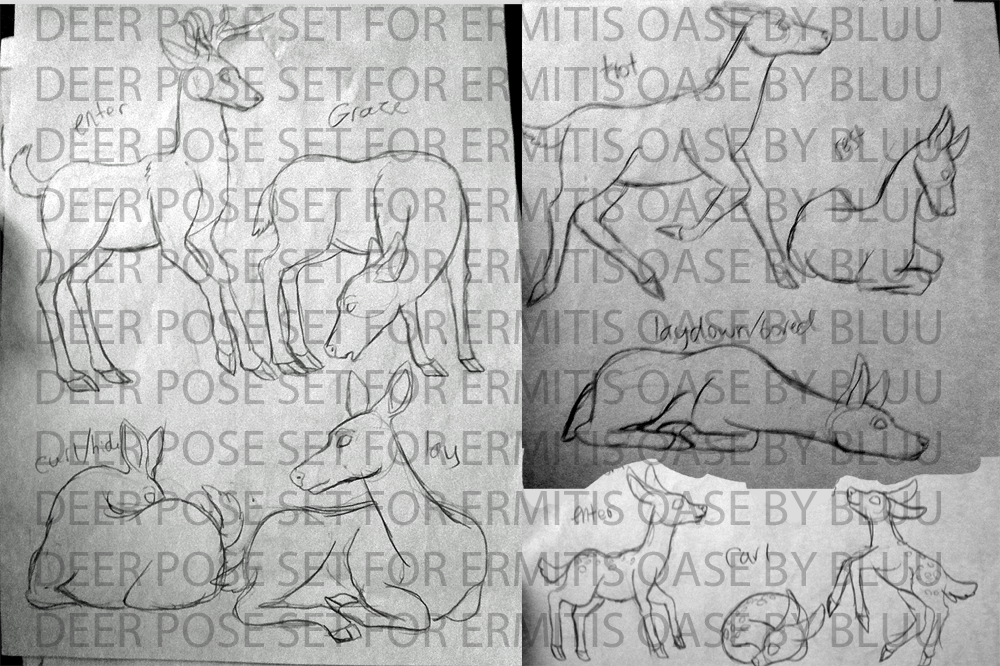 Pose sets (6-22 completed) DeersetforEO_zps3d169897