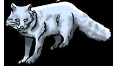BluuWynter Foxgrayscale