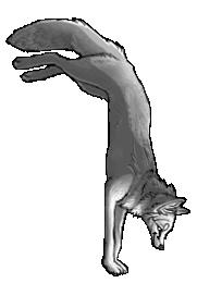 BluuWynter Handstand_edited-1