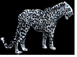 BluuWynter LeopardGrayscaleedited-1