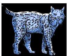 BluuWynter Lynxgrayscale