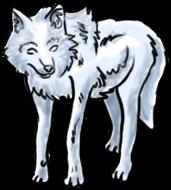 BluuWynter Walkingwolfgrayscale