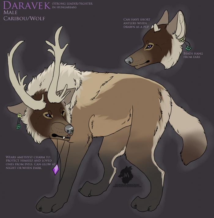 Bluu's Character Family (New! ok I am always getting New ones...) Caribou_wolf__sold_by_makoce-d6aik0z_zpsb97944c2copy_zpsfaebd6ca