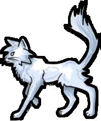 BluuWynter Kittygrayscale