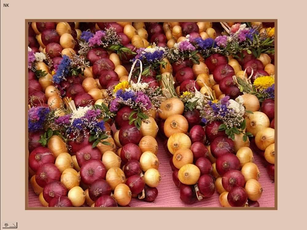 مهرجان البصل حلو بس البس ى نضارة البصل او المطبخ Nidokidos183