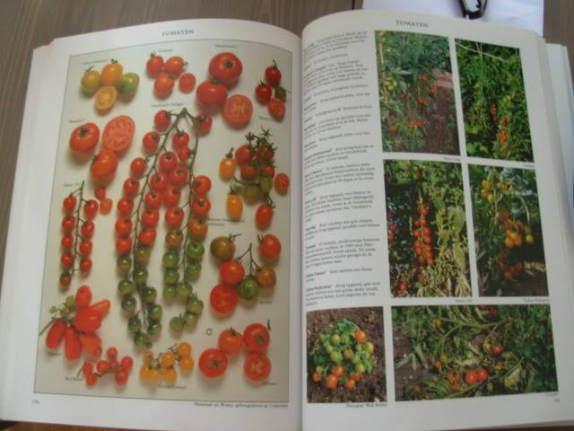 Tuinboeken Augustus2011014