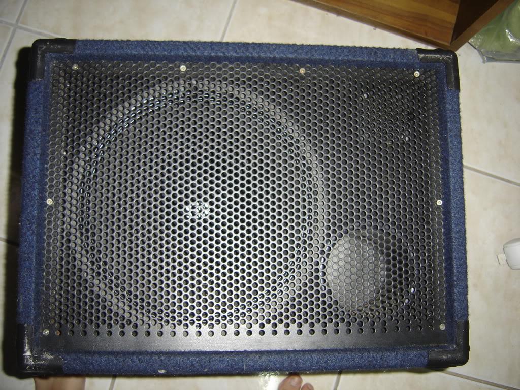 Selenium 12PW5 300Watts em caixa handmade. DSC01708