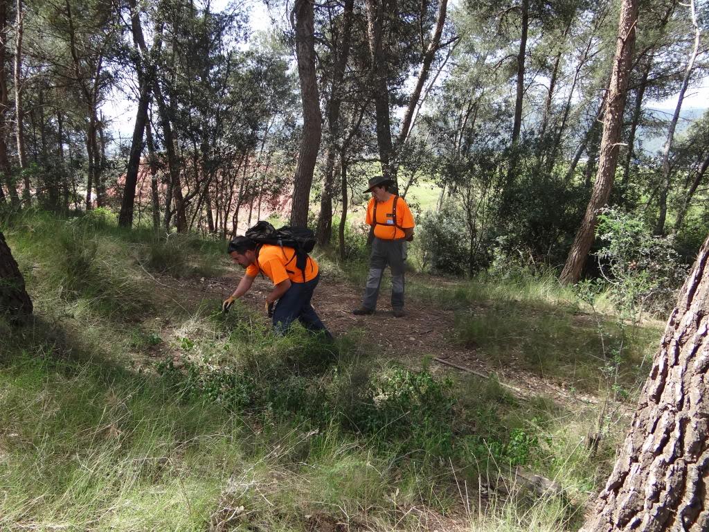 Segunda   Jornada Iniciación al Rastreo en Cataluña DSC01278