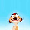Le Roi Lion Disney0ac1