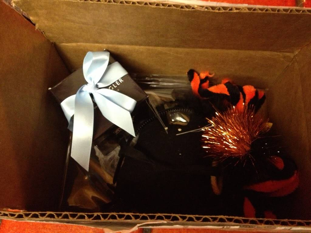 Yay! My Halloween Package Is Here!  Null_zps879e007f