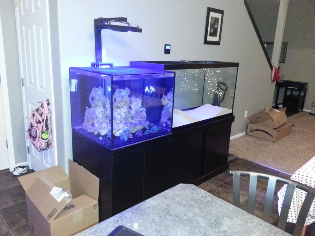 DWOlson's Rebuild of the 50 gal(now 90 gal) 20131204_175734_zps5a0f033c