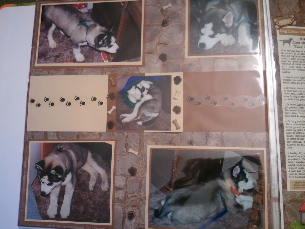 My Beautiful Dakota 2012-01-09200643