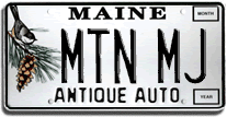 License plate ideas MTNMJ