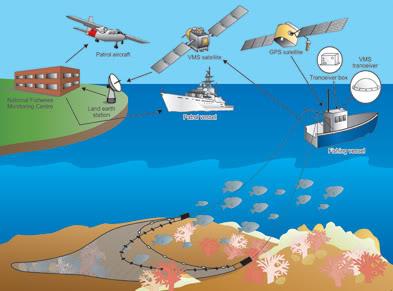 Tổng hợp các bài viết về trang thiết bị hàng hải Marequip702