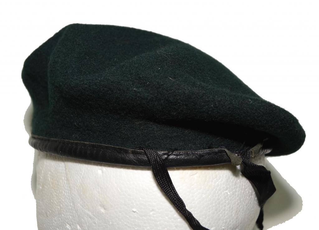 Vietnam Era Green Beret or Post Vietnam? DSC_7971_zps4333fc7e