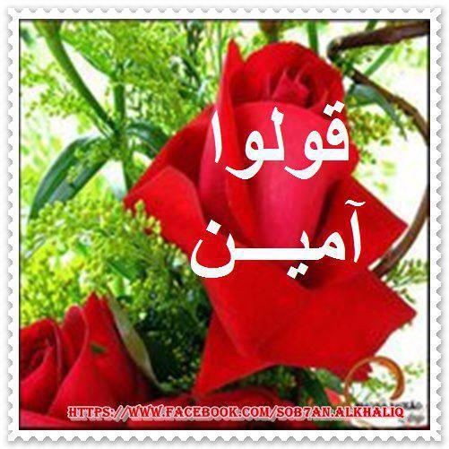 شفاك الله أمي .. 643932_393500064056747_1484286843_n1