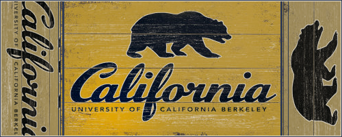 {+18} Calapalooza ~ Berkeley University of California [Confirmación Élite] Xv