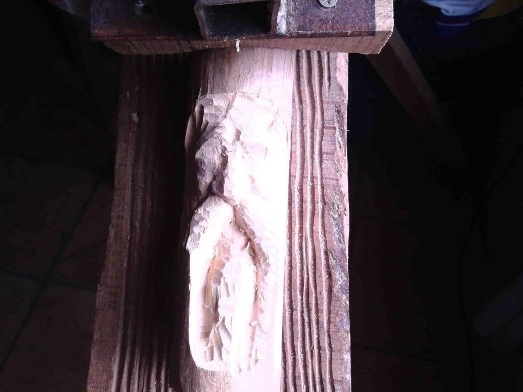 Sumski duhovi - Page 2 IMG_20150130_123419_zpsb221f5f5
