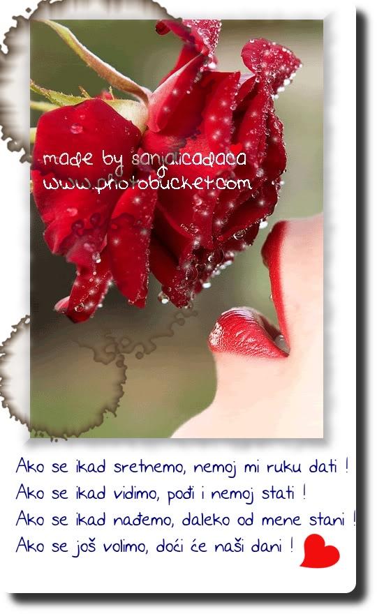Stihovi u slikama - Page 6 Mojaljubav1redrose