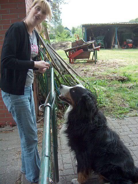 Der Hundethread - Seite 2 K-HPIM2725