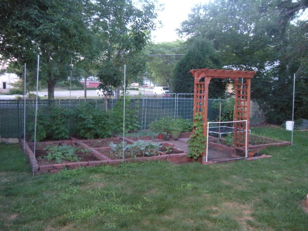 My garden pictures I promised. DSCN7011