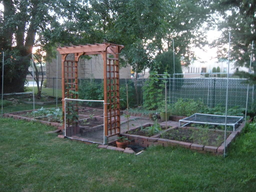My garden pictures I promised. DSCN7012