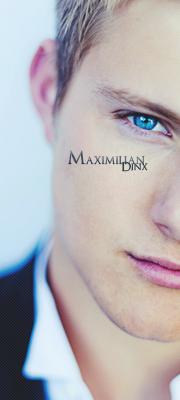 Maximilian F. Dinx