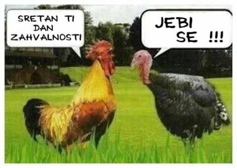 Smijesne Slike Koka_zpsdba0c1b1