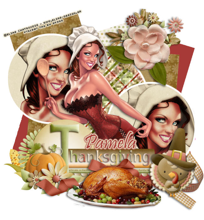 NOVEMBER DOTM VOTING! Thanksgivingfeast-pamela