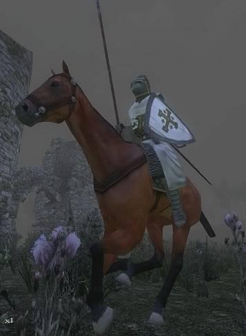 The Royal Guard Mb374-1
