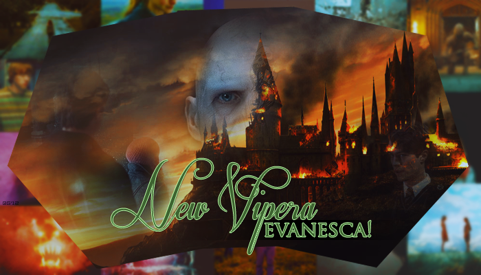 New Vipera Evanesca!
