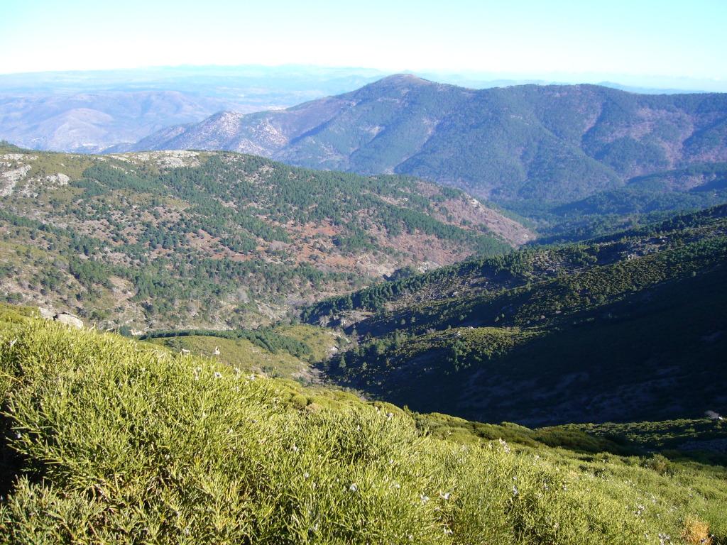 cerro de la escusa P1010241