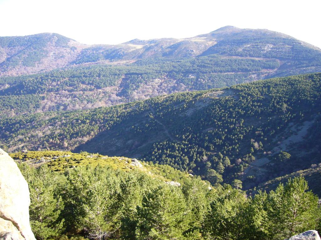 cerro de la escusa P1010245