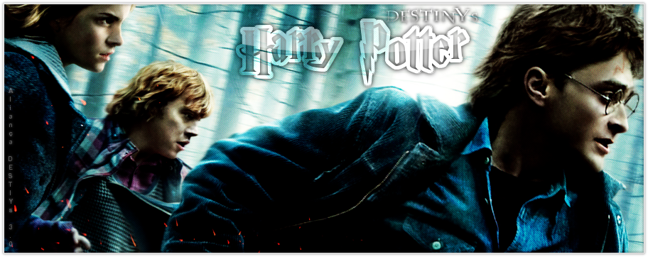 Harry Potter DESTINYs