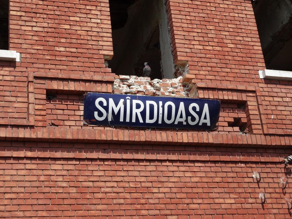909 : Rosiori Nord - Alexandria - Zimnicea - Pagina 15 DSC04989_zps8ccq3vpj