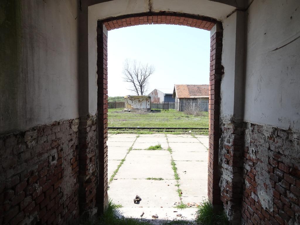 909 : Rosiori Nord - Alexandria - Zimnicea - Pagina 15 DSC04994_zpsulgyyvgl