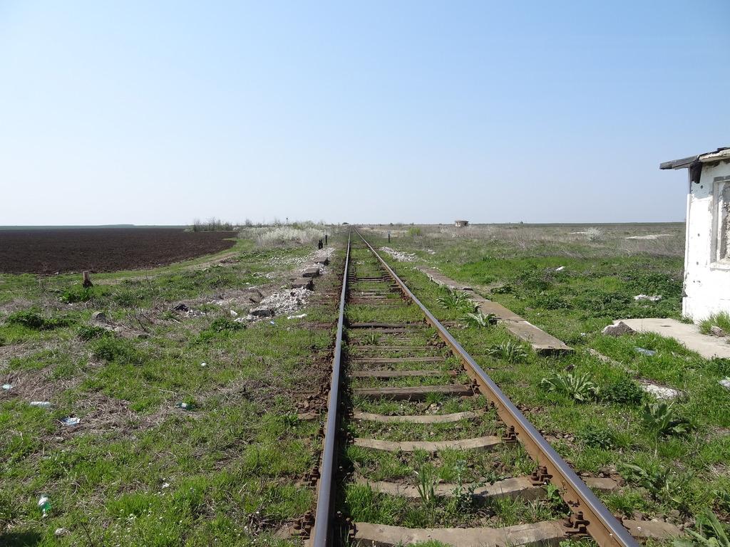 909 : Rosiori Nord - Alexandria - Zimnicea - Pagina 15 DSC05014_zpsul8be5xs