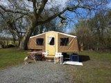 Delboy the Dandy Delta @Lower Grange Farm..  Th_20130405_143059