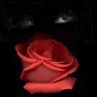 In The Shadows Rose_eyes