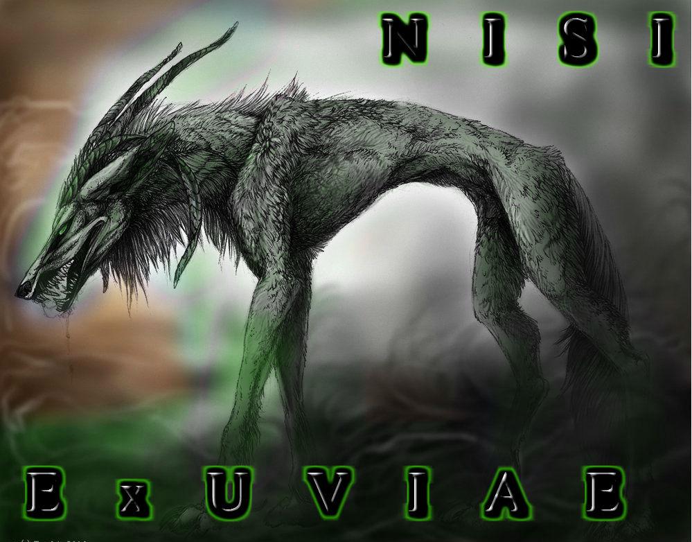 Nisi Exuviae