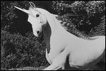 elina avatarid ~ uued 26.10  17-5