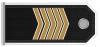 Battalion Rank Structure and Responsibilities  Fahnrich-1