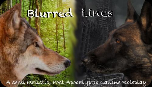 Blurred Lines - Semi Realistic Canine RP 63A9F991-BFFA-47A3-86BB-81DEBB5A3288_zpseofocjy6