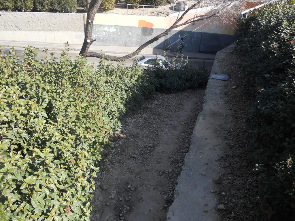 Movilidad en Alcalá de Henares DSCN2030