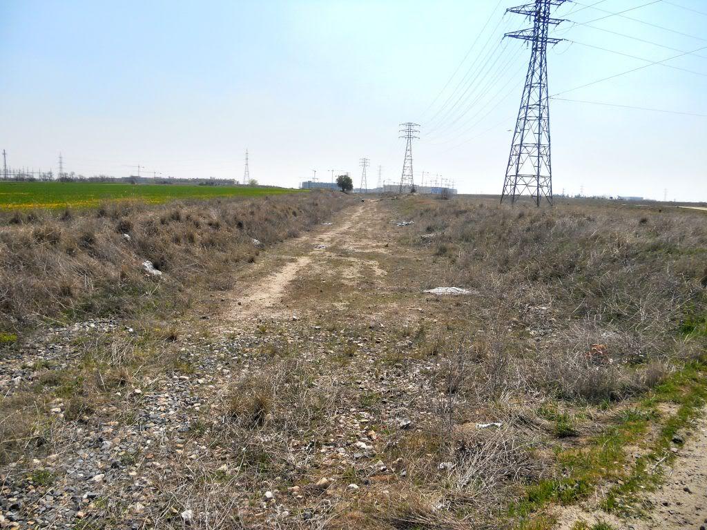 Futura vía verde: Campamento-Las Águilas-Alcorcón-Leganés-Polvoranca DSCN2512