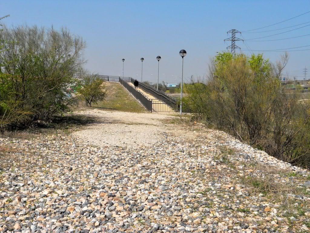 Futura vía verde: Campamento-Las Águilas-Alcorcón-Leganés-Polvoranca DSCN2515