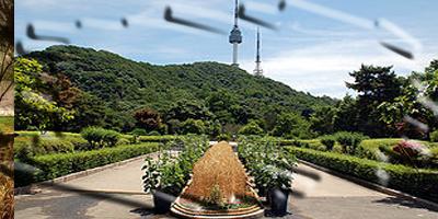 Mt. Namsan