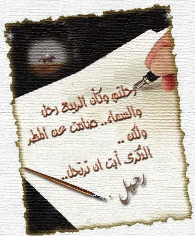 صفة الرحمن في سورة الإخلاص 01193491497